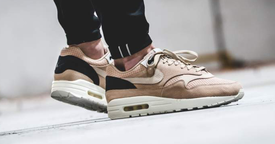 air max 1 pinnacle kopen
