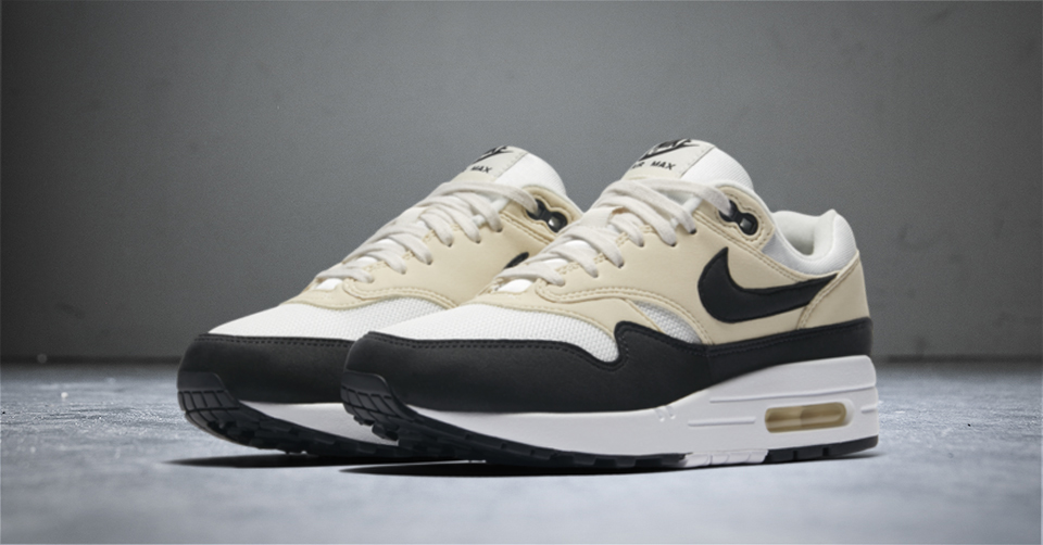Top 10 Air Max 1 Steals | Sneakerjagers