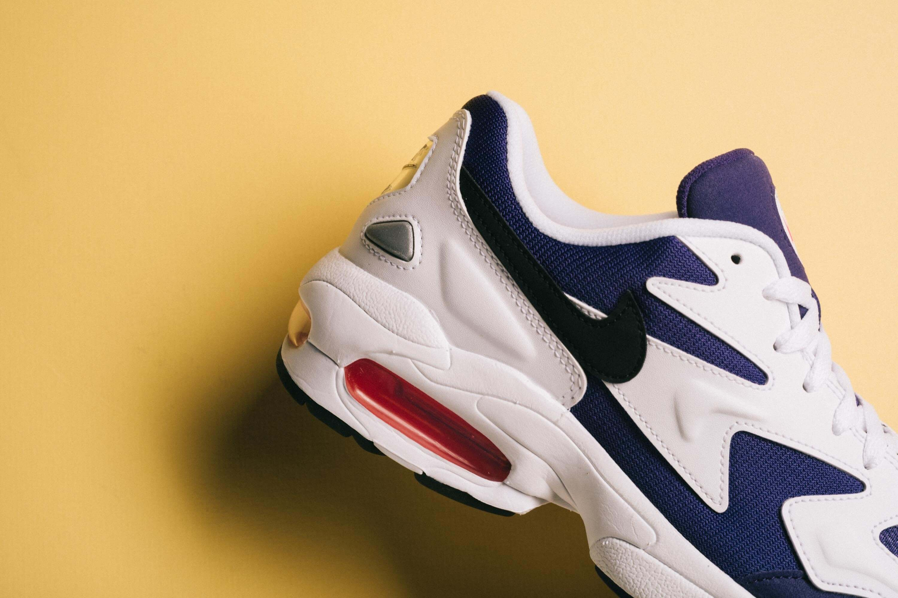 Air Max 2 Light 'Court Purple'