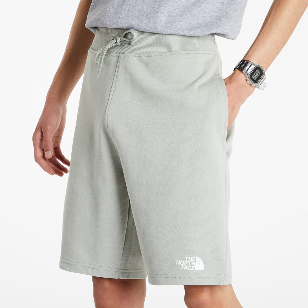 The north face standard shorts
