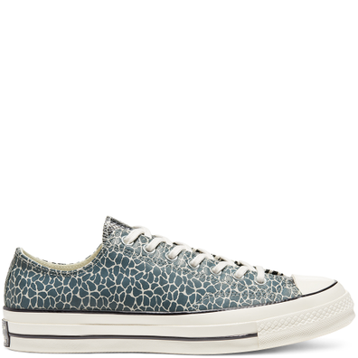 Chuck 70 Space Animal Low Top productafbeelding