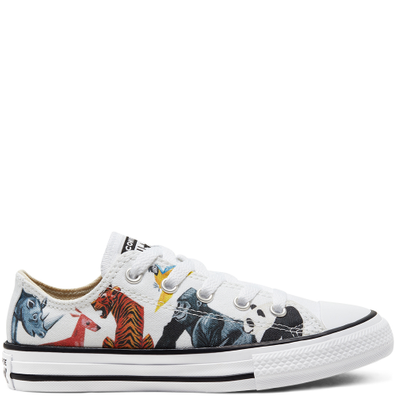 Big Kids Science Class Chuck Taylor All Star Low Top productafbeelding