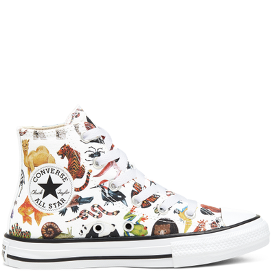 Big Kids Science Class Chuck Taylor All Star High Top productafbeelding