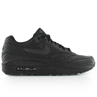 Nike Wmns Air Max 1 Prm productafbeelding