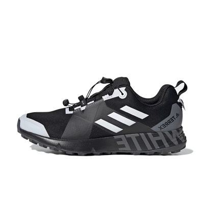 adidas Terrex_WM Two GTX productafbeelding