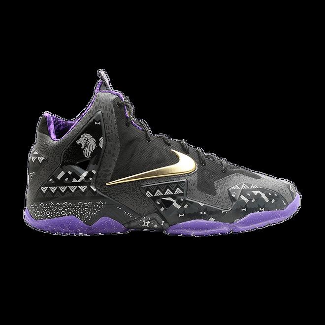 Nike LeBron 11 Black History Month (GS)