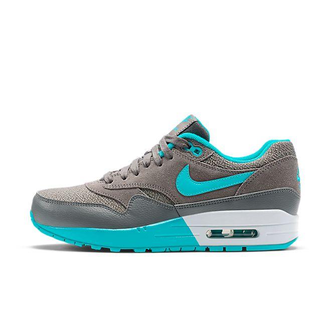 Nike Air Max 1 Wmns 203 | 319986 203 | Sneakerjagers