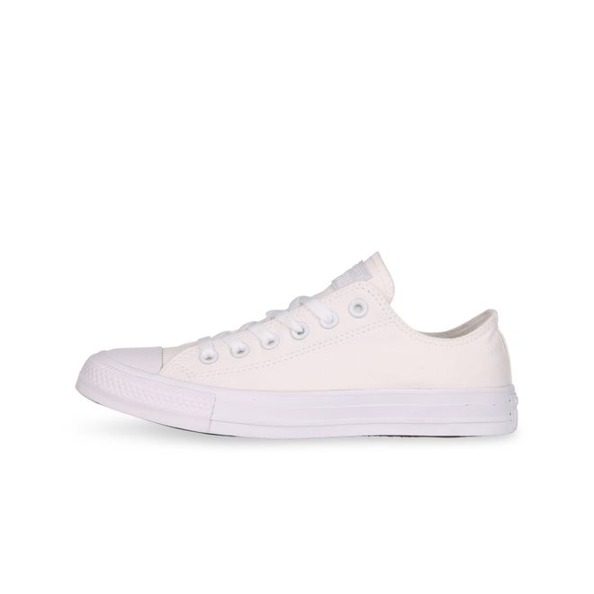 Converse All Star Ox CT AS SP White