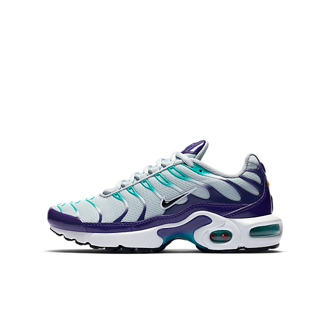 Nike Air Max Plus  AR1852-005