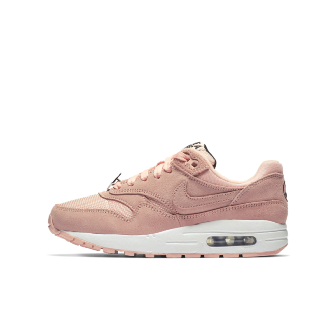 Nike Air Max 1 GS Coral 'Have A Nike Day' AT8131-600